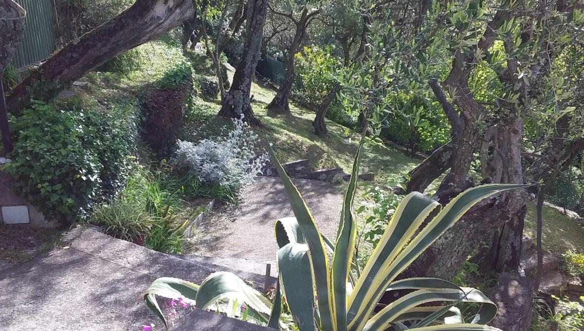Attico via di Landea - Rapallo (14)