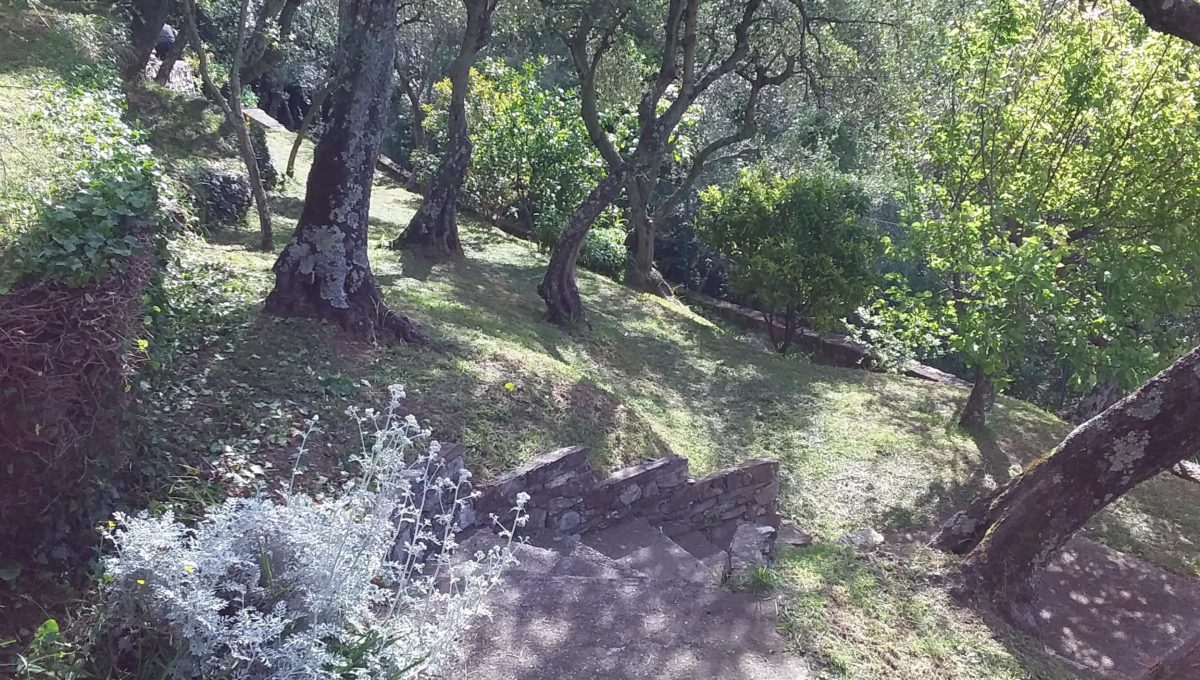 Attico via di Landea - Rapallo (16)