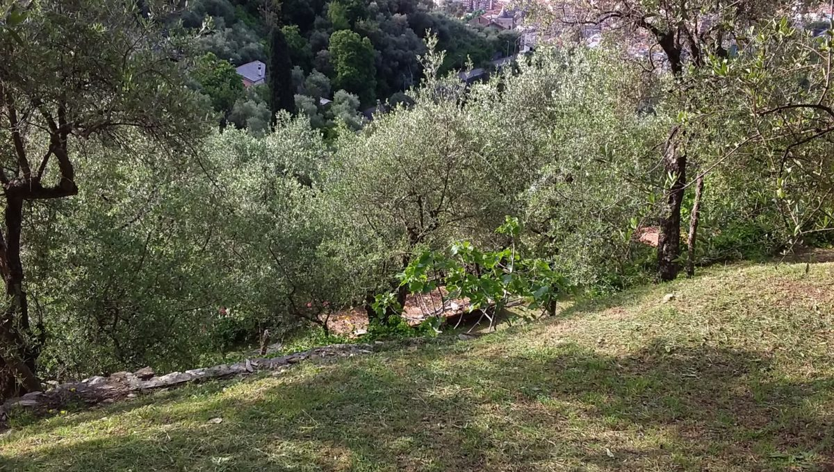 Attico via di Landea - Rapallo (18)